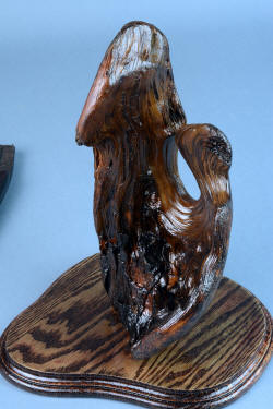 """Golden Eagle"" stand. Ponderosa pine burl is an independent work of natural art."