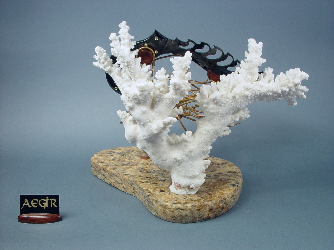 "White Caribbean coral backdrop on ""Aegir"" knife sculpture"