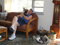 Jay with cats