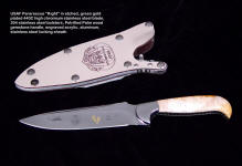"USAF Pararescue ""Kight"" in etched 440C high chromium stainless steel blade, 304 stainless steel bolsters, petrified palm wood gemstone handle, acrylic, aluminum, blued steel locking sheath"